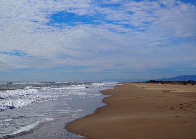 Migjorn wild beach Ebro Delta