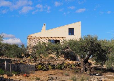 back yard Casa Brava
