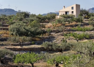 garden Casa Brava